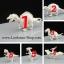 ชุดตัวต่อและระบายสีไดโนเสาร์ thumbnail 2