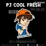 แผ่นน้ำหอมปรับอากาศ PJ Cool Fresh กลิ่น CK-1