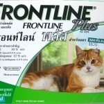Frontline Plus for cats กำจัดตัวเบียนภายนอกของแมว Exp.04/18