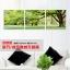 Art-pn ภาพต้นไม้แห่งชีวิต thumbnail 4