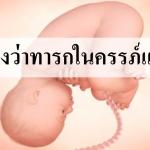 จะรู้ได้อย่างไรว่าทารกในครรภ์แข็งแรง?