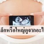 ทารกในครรภ์ตัวเล็กหรือใหญ่ดูได้จากอะไรบ้าง?