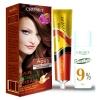 ครูเซ็ท ครีมย้อมผม รุ่น A เอ 993 สีน้ำตาลแดงมะฮอกกานี Cruset Hair Colour Cream A Series A 993 Reddish Mahogany 60 ml.