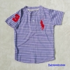 Polo : เสื้อยืดลายขวาง สีม่วง คอติดกระดุม แขนปักเลข 3 size : 6T / 8T