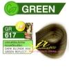 ครีมเปลี่ยนสีผม ดีแคช มาสเตอร์ แมส คัลเลอร์ครีม Dcash Master Mass Color Cream GR 617 บลอนด์เข้มประกายหม่นเหลือบเขียว ( Dark Blonde Ash Green Reflect) 50 ml.