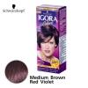 Schwarzkopf IGORA Colors อีโกร่า อินเทนซีฟ คัลเลอร์ ครีม 4-89 Medium Brown Red Violet น้ำตาลกลาง ประกายแดงม่วง 50 ml.
