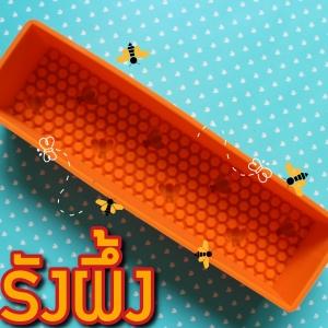 บล็อกสบู่ รังผึ้ง 1080กรัม B704