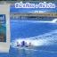สารปรับสภาพน้ำ สีน้ำเทียมเลี้ยงสัตว์น้ำ สีน้ำเงิน thumbnail 4