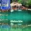 สารปรับสภาพน้ำ สีน้ำเทียมเลี้ยงสัตว์น้ำ สีเขียว thumbnail 7