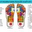 พร้อมส่งฟรี ลงทะเบียน รองเท้าแตะลายพราง นวดกดจุดเพื่อสุขภาพ สีเทา thumbnail 3