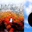 ทัวร์เกาหลี Beautiful Korea 5วัน 3คืน 7C/LJ/ZE/TW thumbnail 1