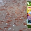จุลินทรีย์ย่อยสลายของเสียในบ่อเลี้ยงสัตว์น้ำ thumbnail 7