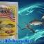 สารปรับสภาพน้ำ สีน้ำเทียมเลี้ยงสัตว์น้ำ สีน้ำเงินแกมเขียว thumbnail 4