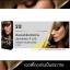 ดิ๊๊พโซ่ แฮร์ คัลเลอร์ S13 สีบลอนด์เขียวสาหร่ยประกายทอง จี 6/3 (Seaweed Golden Blond G 6/3) thumbnail 1