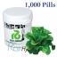 เมล็ดพันธุ์ Green Cos (เคลือบ) 1,000 เมล็ด thumbnail 1