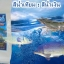 สารปรับสภาพน้ำ สีน้ำเทียมเลี้ยงสัตว์น้ำ สีน้ำเงิน thumbnail 2