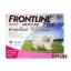 ผลิตภัณฑ์กำจัดเห็บ หมัด ฟรอนท์ไลน์ (Frontline Plus) สำหรับสุนัขน้ำหนักน้อยกว่า 5 กิโลกรัม อายุ 8 สัปดาห์ขึ้นไป thumbnail 1