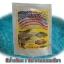 สารปรับสภาพน้ำ สีน้ำเทียมเลี้ยงสัตว์น้ำ สีน้ำเงินแกมเขียว thumbnail 6
