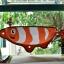 เปลแมวติดกระจก ปลานีโม thumbnail 5
