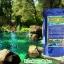 สารปรับสภาพน้ำ สีน้ำเทียมเลี้ยงสัตว์น้ำ สีเขียว thumbnail 4