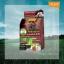 โลแลน เนเจอร์ โค้ด คัลเลอร์ แชมพู ปราศจากแอมโมเนีย F3 สีน้ำตาลประกายแดงมะฮอกกานี (สีโค้ก) สีแฟชั่น ปิดผมขาว thumbnail 1