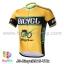 เสื้อจักรยานแขนสั้นทีม Bicycl 2015 สีเหลืองดำ สั่งจอง (Pre-order) thumbnail 1