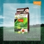 โลแลน เนเจอร์ โค้ด คัลเลอร์ แชมพู ปราศจากแอมโมเนีย N3 สีช็อกโกแล็ต