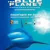 The Blue Planet : โลกสีน้ำเงิน (DVD มาสเตอร์ 4 แผ่นจบ + แถมปกฟรี)
