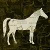 แนพกิ้น 33x33 Horse 13305626