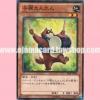 SHSP-JP015 : Tan-Tan the Raccoon Rascal (Common)