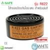 ไส้กรองป้องกันไอระเหย สำหรับพ่นสี รุ่น R622 (Filter)