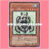 ABPF-JP031 : Pandaborg (Rare)