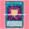 PP16-JP018 : Rank-Up-Magic Argent Chaos Force / Rank-Up-Magic - Argent Chaos Force (Common)