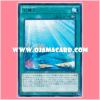 CPD1-JP042 : Aquarium Stage (Rare)
