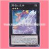 REDU-JP048 : Soul of Silvermountain (Super Rare)