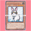 PHSW-JP037 : Rescue Rabbit (Rare)