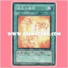 ANPR-JP060 : Rekindling / Eruption of True Flame (Normal Rare)