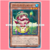 LVAL-JP044 : Majiosheldon / Advance Devoter (Normal Rare)