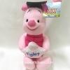ตุ๊กตาพิกเล็ต Piglet รับปริญญา ขนาด 10 นิ้ว ลิขสิทธิ์แท้