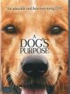 A Dog'S Purpose / หมา เป้าหมาย และเด็กชายของผม (บรรยายไทยเท่านั้น)