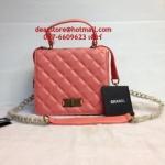 Chanel Classic Boy bag