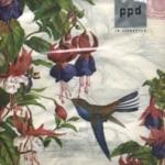 p-7340 แนพกิ้น33