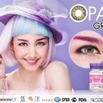 opal gray