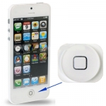 Home Button iPhone 5 (White)