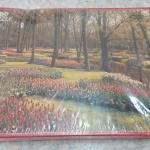Jigsaw Puzzle 1000ชิ้น Favorit Holland