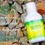 น้ำยาบ้วนปาก Bamboo mouthwash สารสกัดพิเศษจากเยื่อไผ่ thumbnail 3