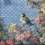 p-7375 แนพกิ้น33 Bird thumbnail 1