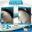 FEORA ฟีโอร่า ชนิดแคปซูล บรรจุ 15 แคปซูล thumbnail 8