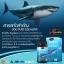 Auswelllife Pure Squalene Tasmanian 1,000mg ออสเวลไลฟ์ เพียว สควอลีน น้ำมันตับปลาฉลาม บรรจุ 60เม็ด thumbnail 6
