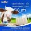 Healthway Liquid Calcium Plus Vitamin D3 ลิควิดแคลเซียม thumbnail 4